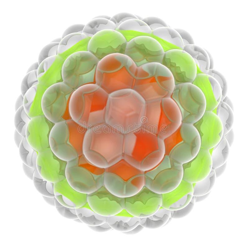Herpes-Virus stock abbildung