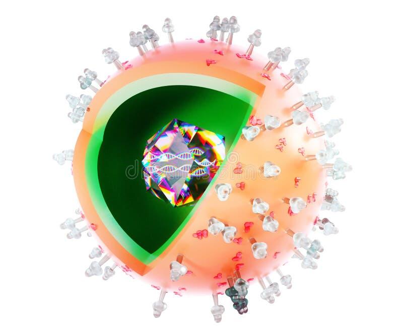 Herpesvirus, 3D tolkning, tolkning 3D vektor illustrationer
