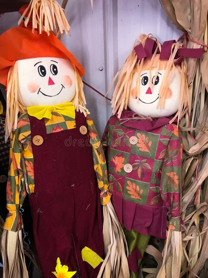 Herr und Frau Scarecrow stockbild
