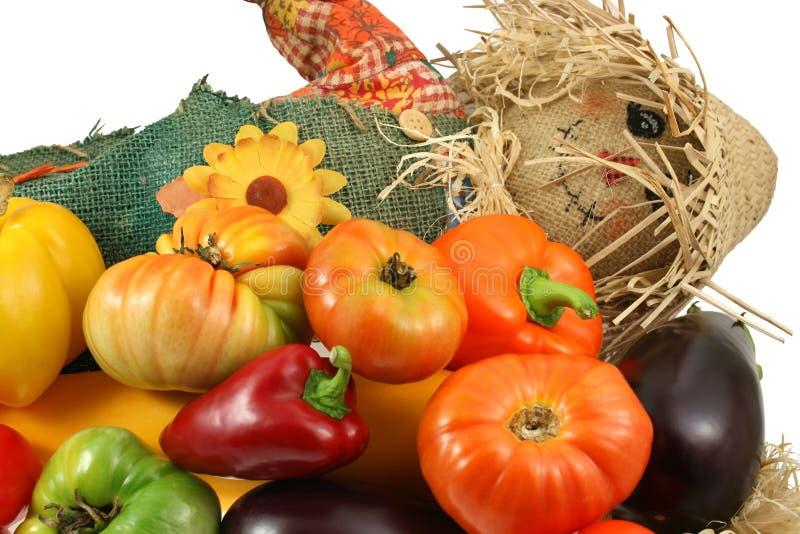 Herr Vogelscheuche mit Gemüse lizenzfreie stockbilder