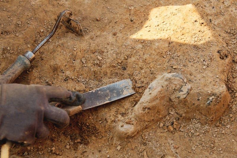 Herramientas arqueológicas, arqueólogo que trabaja en sitio, mano y herramienta foto de archivo libre de regalías