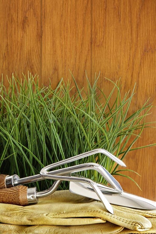Herramientas de jardín con la hierba en la madera imagen de archivo