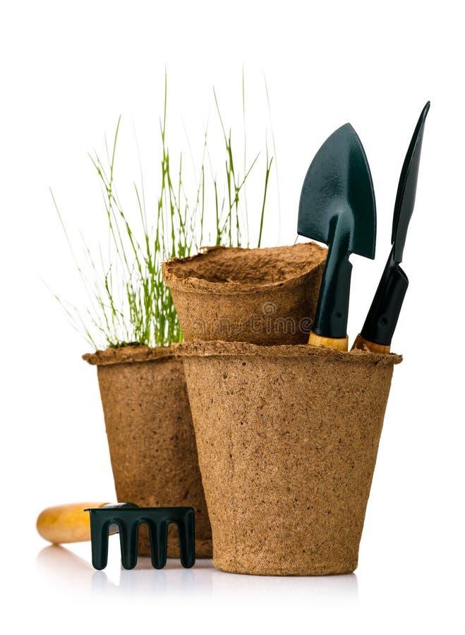 Herramientas para cultivar un huerto: pote de la turba con los almácigos y las palas aislados foto de archivo