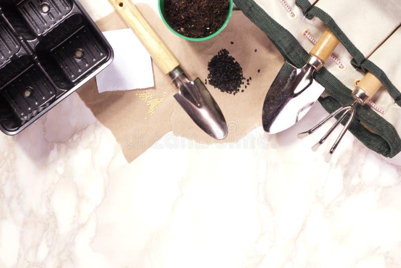 Herramientas que cultivan un huerto en el fondo de mármol imagen de archivo libre de regalías
