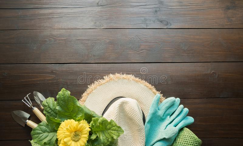 Herramientas que cultivan un huerto, flores, guantes y suelo en el tablero de madera Primavera y trabajo en el jard?n imagenes de archivo