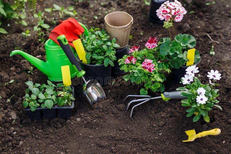 Herramientas Que Cultivan Un Huerto Y Flores En El Pote Para Plantar ...