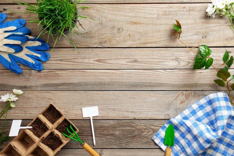Herramientas que cultivan un huerto y plantas en la tabla de madera del vintage, la planta del cultivo y el concepto que cultiva  fotos de archivo