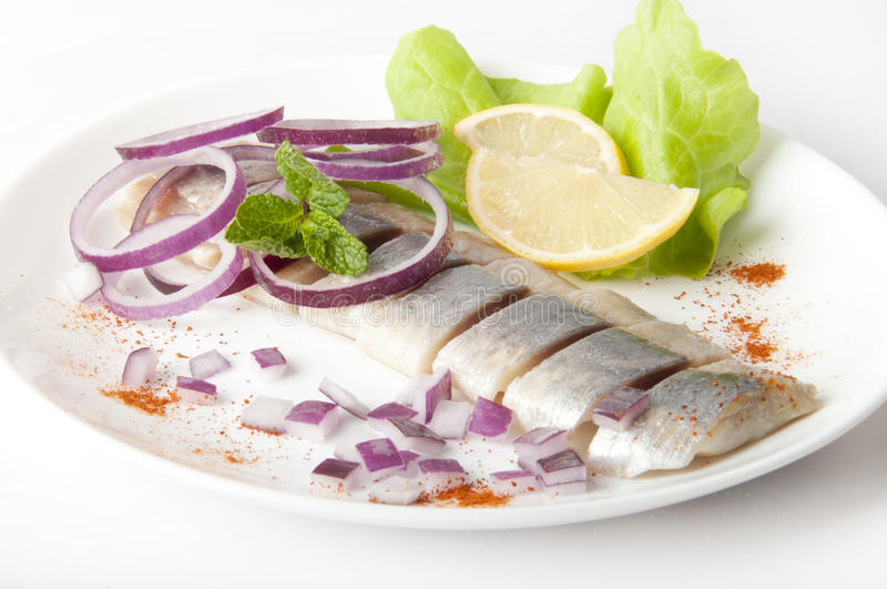 Herring. Portion of typical Dutch herring on the plate and on white Background stock photography