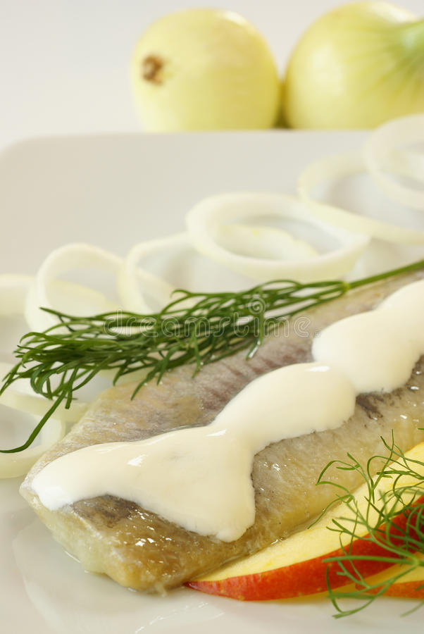 Herring with cream. Cured herring with sour cream, onion and apple stock photo