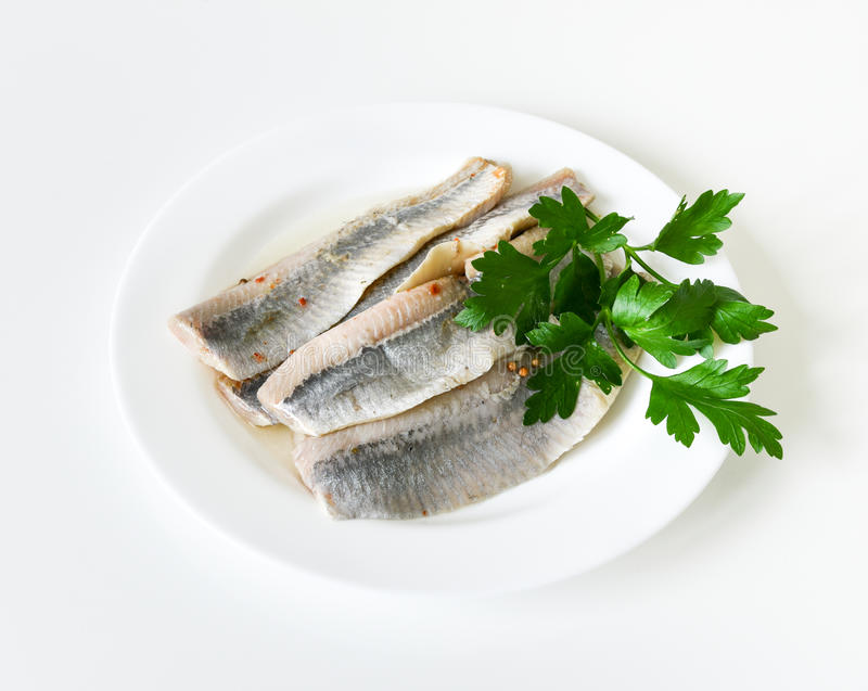 Herring fillet. Pieces of salted herring fillet in oil on a white plate with parsley royalty free stock image