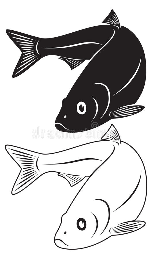 Herring fish. The figure shows the herring fish royalty free illustration