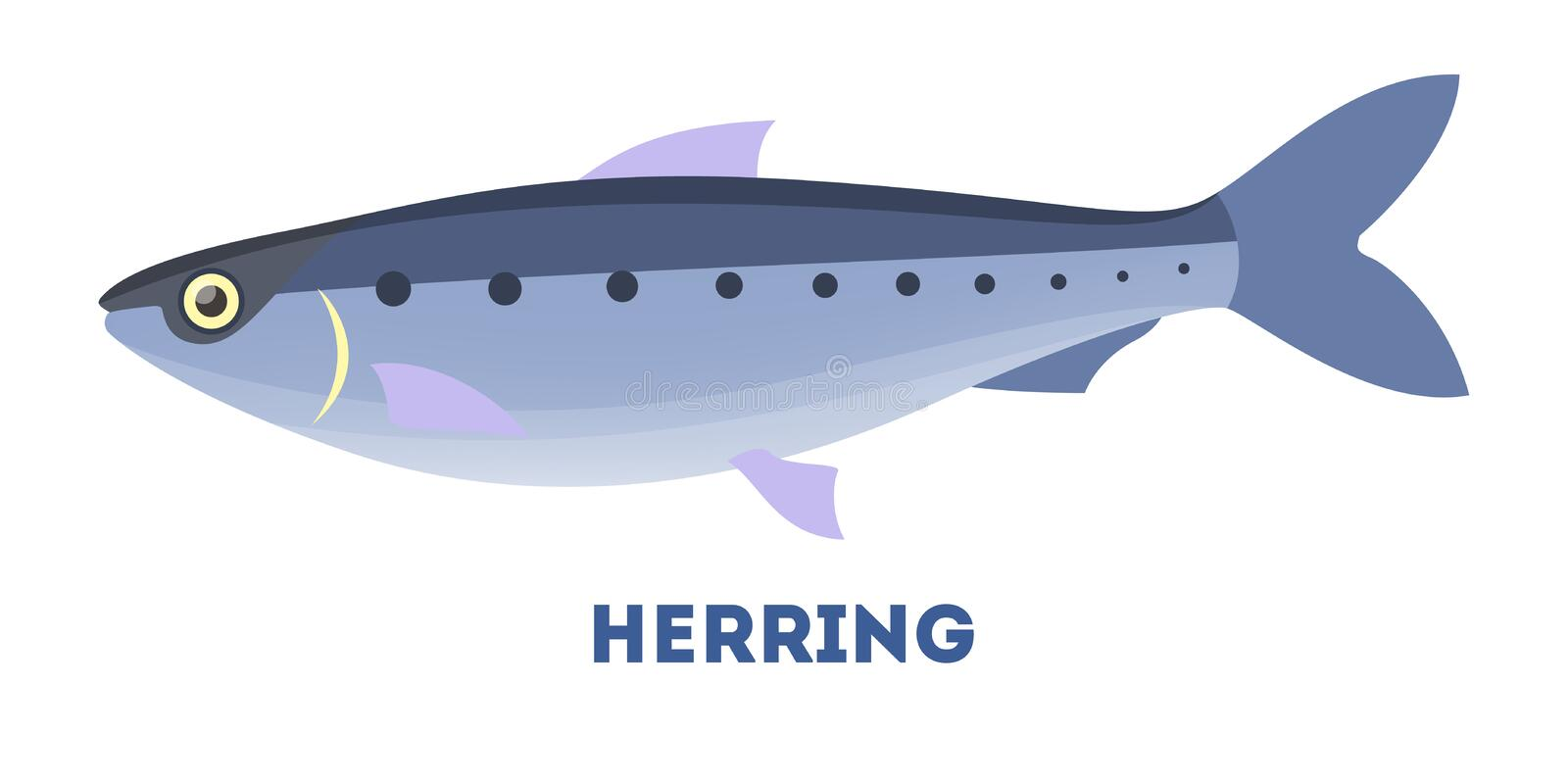 Herring fish from the ocean or sea. Marine creature and water wildlife. Flat vector illustration vector illustration