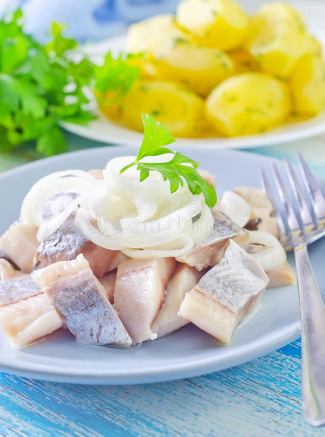 Herring with onion royalty free stock photo