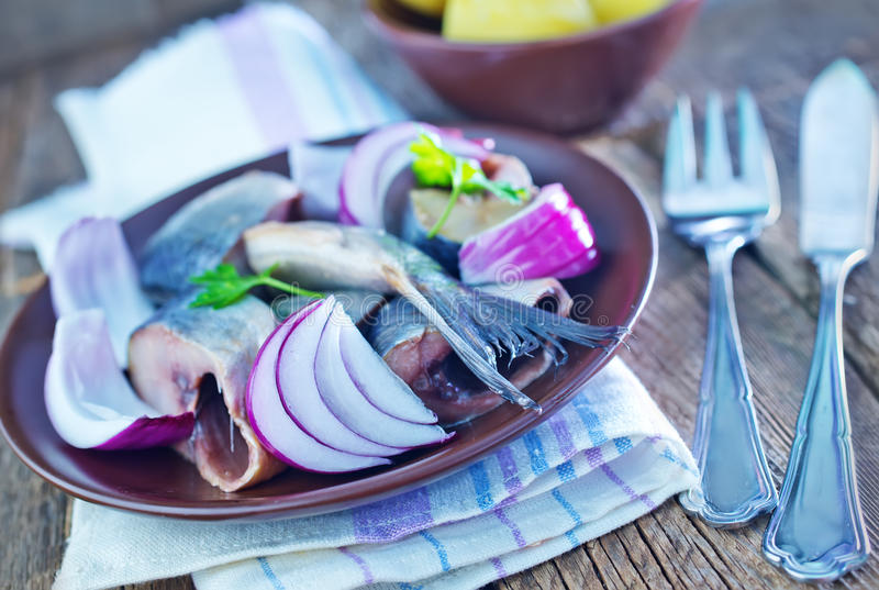 Herring. With onion in bowl and on a table stock photography
