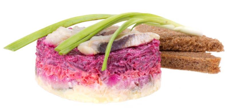 Herring salad. Isolated on white background royalty free stock photos