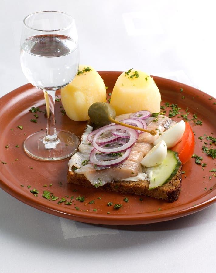 Herring Sandwich And Vodka stock photo