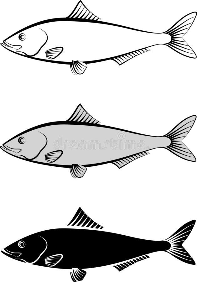 Herring. Isolated herring - clip art illustration stock illustration