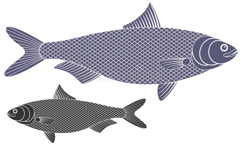 Herring. Vector illustration (EPS 10 vector illustration