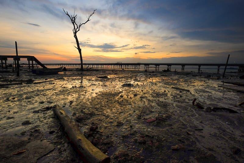 Herrliche Aussicht des Sonnenaufgangs im nassen Boden mit Anlegestellenhintergrund stockfoto