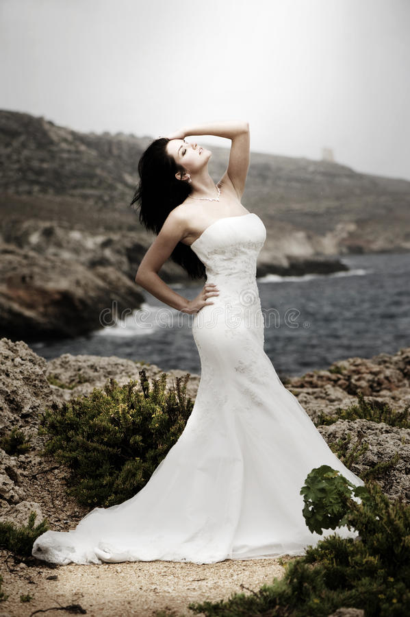Herrliche Braut stockbild