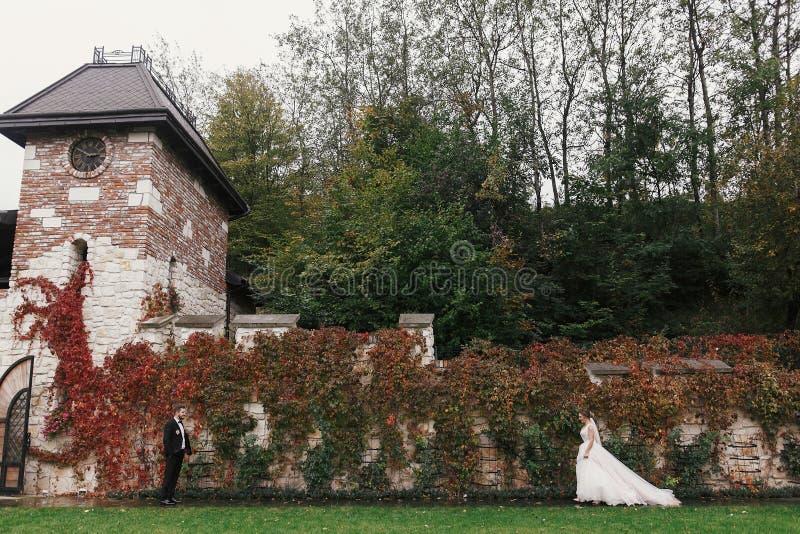 Herrliche Braut und stilvoller Bräutigam, die an der Wand von Herbst rotes L geht lizenzfreie stockbilder