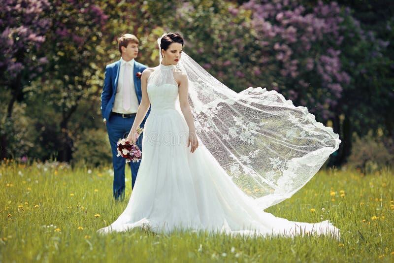 Herrliche Brunettebraut im eleganten Kleid, das im sonnigen Park aufwirft lizenzfreies stockfoto