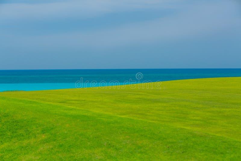 herrliche neue grüne Rasenfläche gegen Hintergrund des ruhigen Ozeans und des blauen Himmels lizenzfreie stockbilder