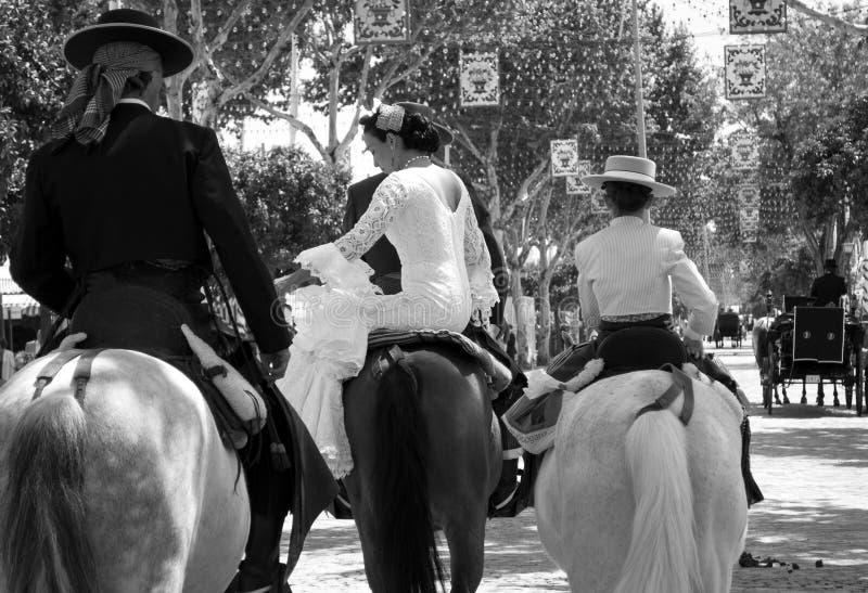 Herrliche Ritter und Amazonas, auf arabischen Pferden stockfotos