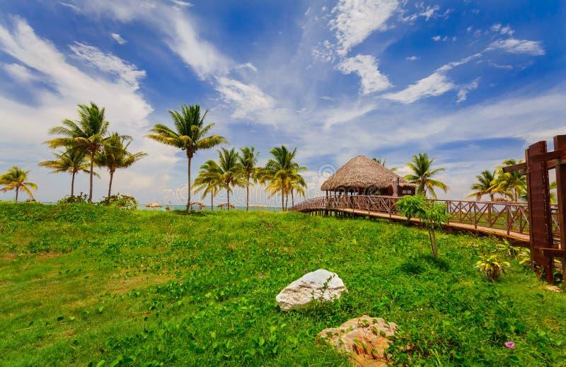 Herrliche tropische Landschaftsansicht mit der Holzbrücke, die zu den Strandbereich führt stockbild