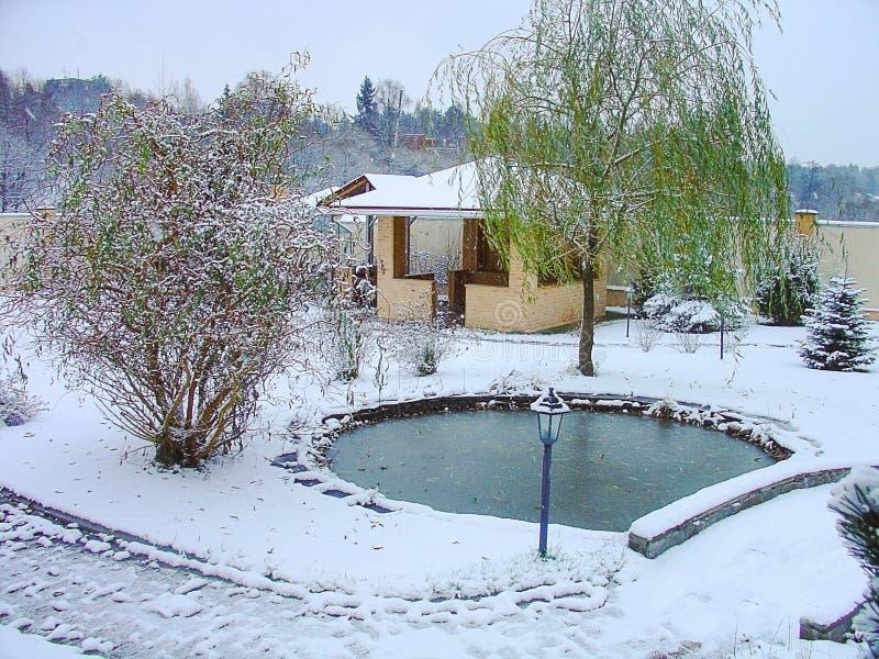 Herrliche Winteransicht des Äußeren eines privaten Gartens Plan des Plans teich Dekoratives Pool mit Felsen und Grünpflanzen lizenzfreie stockfotografie