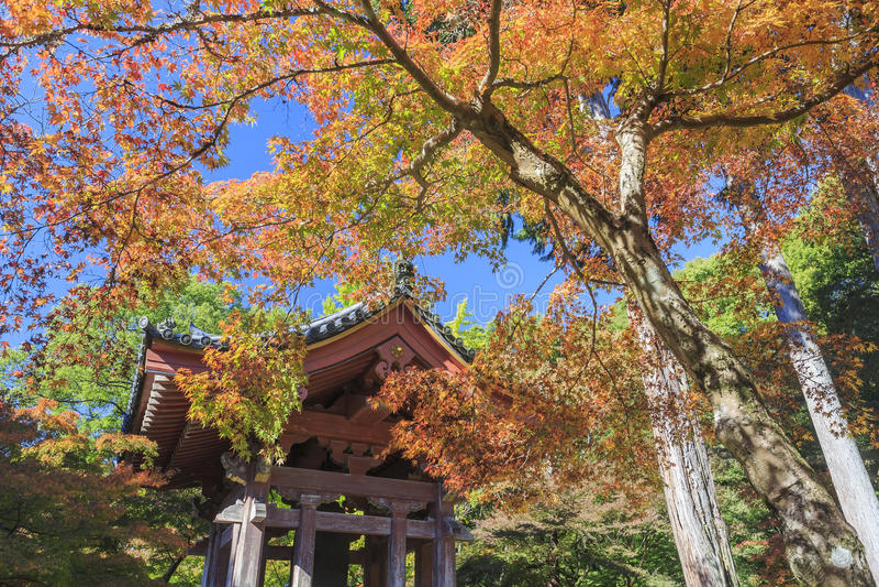 Herrlicher Ausblick, Fallfarbe an Daigoji-Tempel, Japan im Herbst stockfotos
