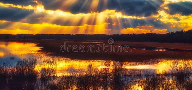 Herrlicher Sonnenunterganghimmel mit hellen Strahlen lizenzfreies stockfoto