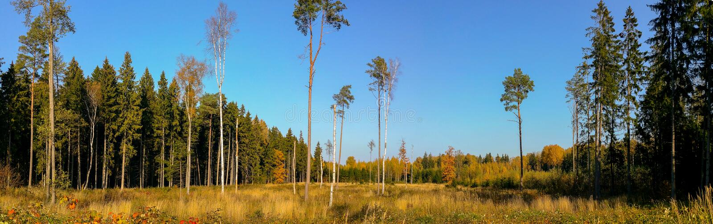 Herrliches Herbstlandschaftspanorama lizenzfreie stockfotografie