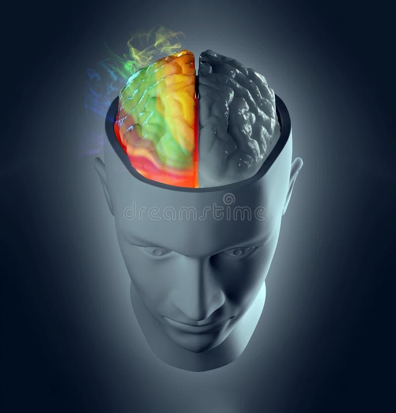 Hersen de hemisfeerconcept van de creativiteit vector illustratie