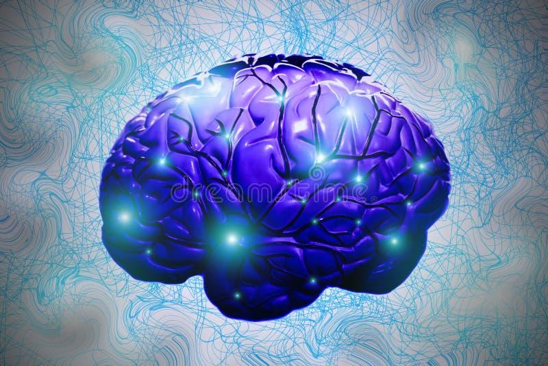 Hersenen in blauwe tonen met gloeiende neuronen in een verwarring van blauwe lijnen - netwerk royalty-vrije illustratie
