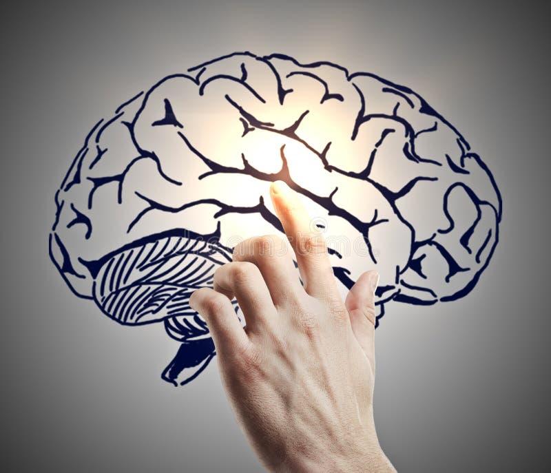 Hersenen en flitsen royalty-vrije illustratie