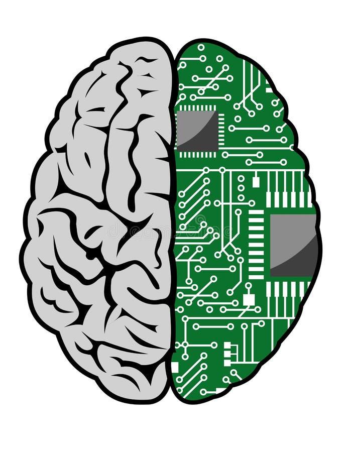 Hersenen en motherboard royalty-vrije illustratie
