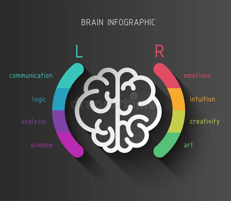 Hersenen infographic concept royalty-vrije illustratie