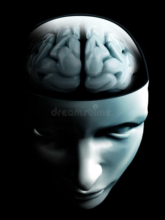 Hersenen op open menselijk gezicht royalty-vrije stock foto