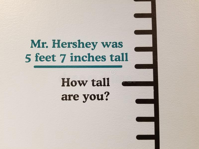 Hershey Fact. Of Hersheys height in his Museum royalty free stock images