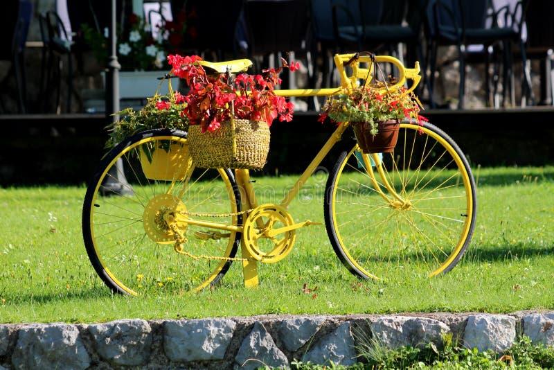 Herstelde en vers geschilderde oude fiets die nu als tuindecoratie wordt gebruikt met het hangen van Begonia en andere bloemen stock afbeelding