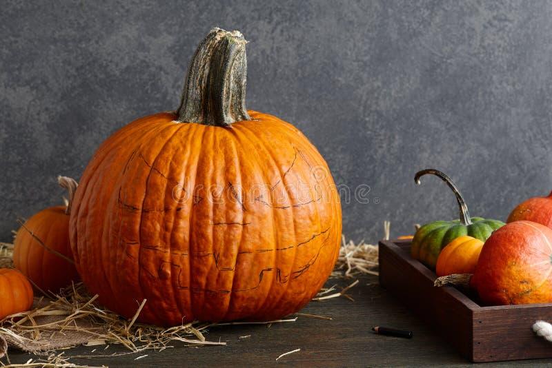 Herstellung der Kürbissteckfassung-olaterne für Halloween-Feiertag stockfoto