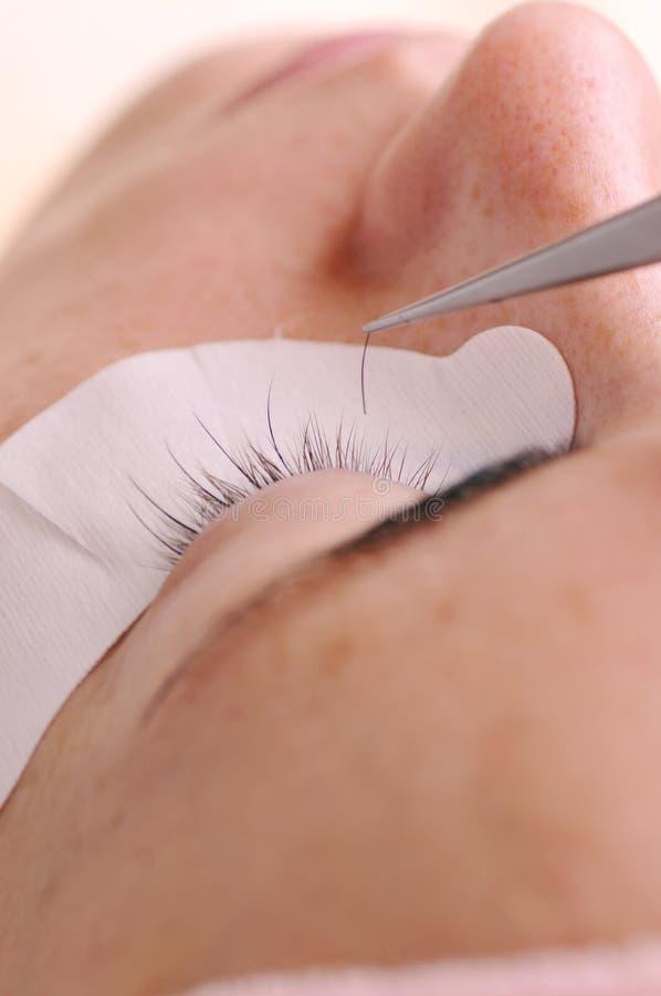 Herstellung von langen falschen oder Erweiterungswimpern im Kosmetiksalon, Sorgfalt über Frauenschönheit stockbild