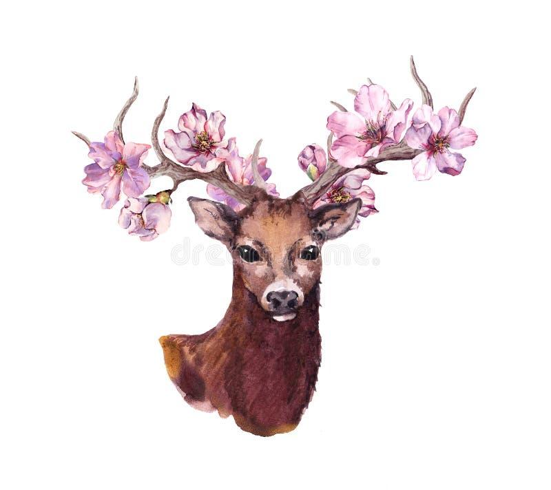Herten dierlijk hoofd met roze de bloesembloemen van de de lentekers in hoornen watercolor stock foto's