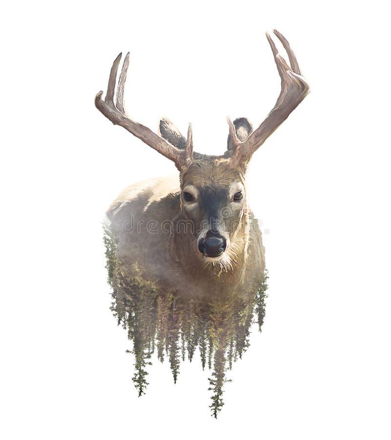 Herten en Forest Watercolor Double Exposure-effect royalty-vrije stock fotografie