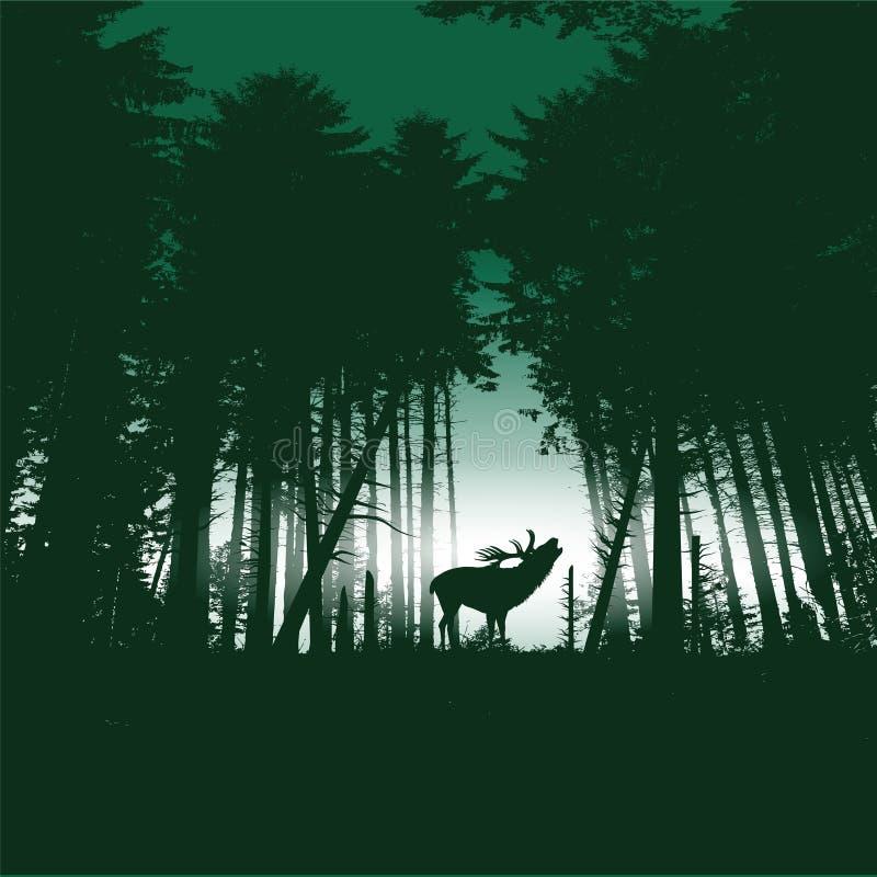 Herten in het bos bij nacht stock illustratie