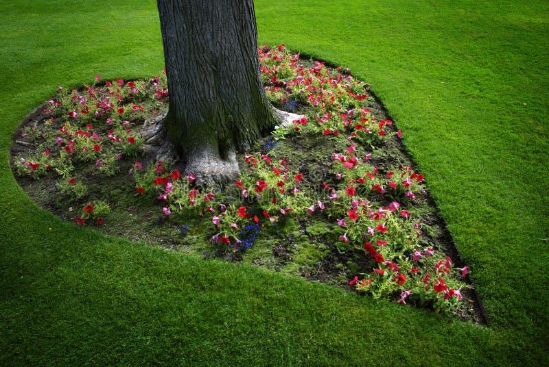 Herz-geformter Blumen-Garten um Baum lizenzfreie stockbilder