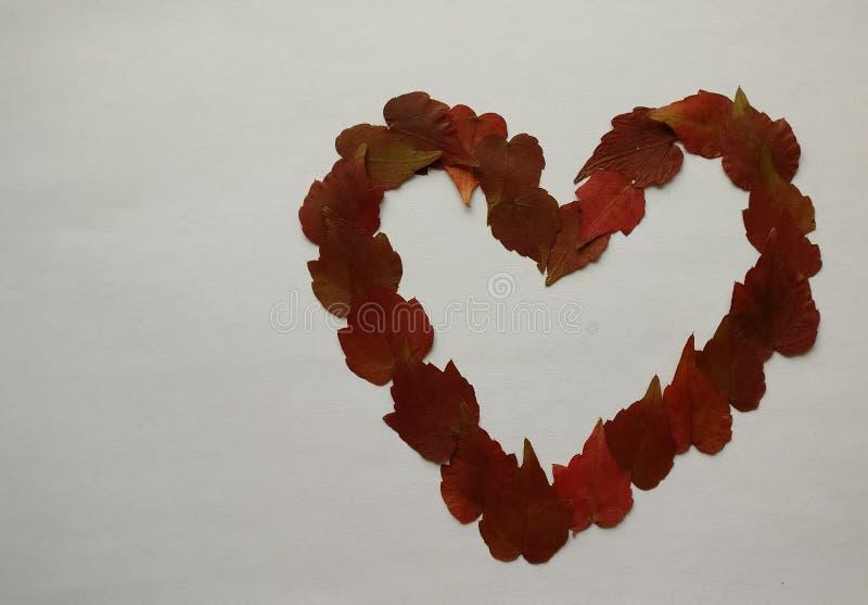 Herz geschaffen mit Laubblättern stockbild