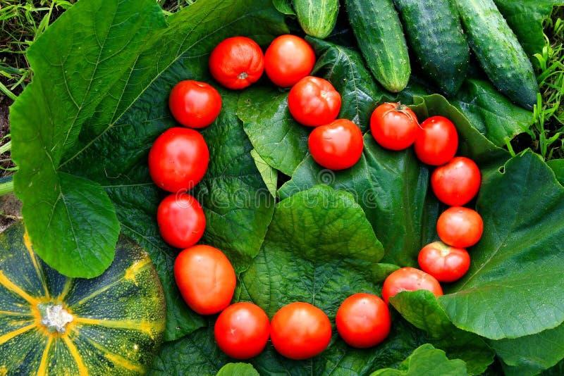 Herz von den Tomaten lizenzfreies stockbild