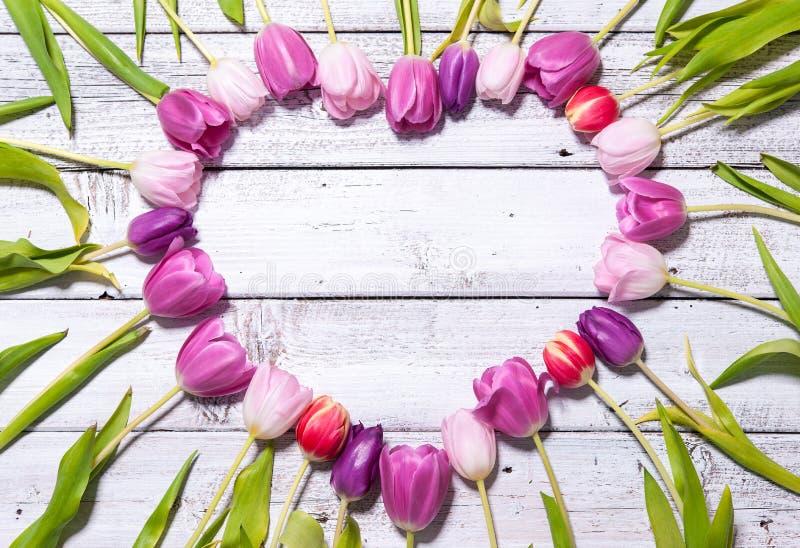 Herz von frischen Tulpen lizenzfreie stockfotos